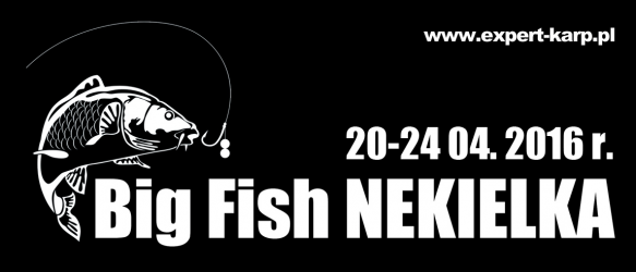 BIG FISH NEKIELKA 2016