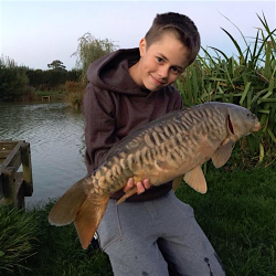 Carp Fishing on the Surface